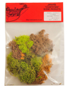 Lichen Autumn Mix